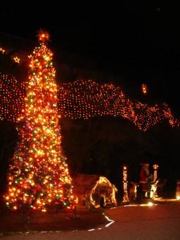 3.グアムのクリスマス.JPG
