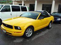 オープンカー 黄色.jpg